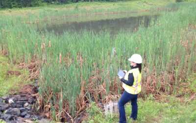 Major Stormwater Revisions Proposed for Maine's Multi-Sector General Permit