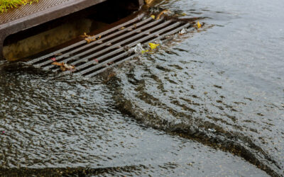 Stormwater Compliance: A Guide for Maine Businesses